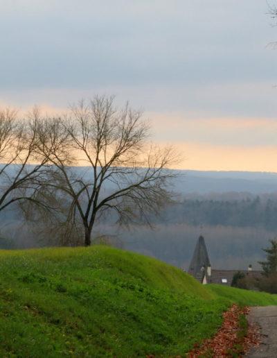 paysage-perche-brume
